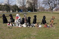 第1回犬一揆野外活動ゴミ拾い