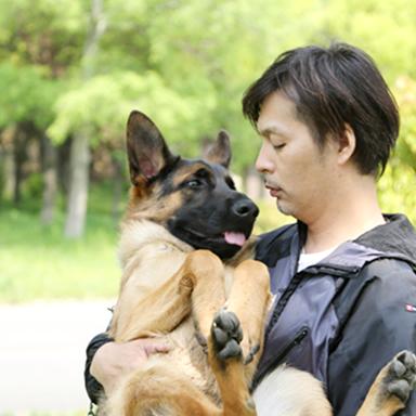Resultado de imagen para german shepherd 犬  幸せ
