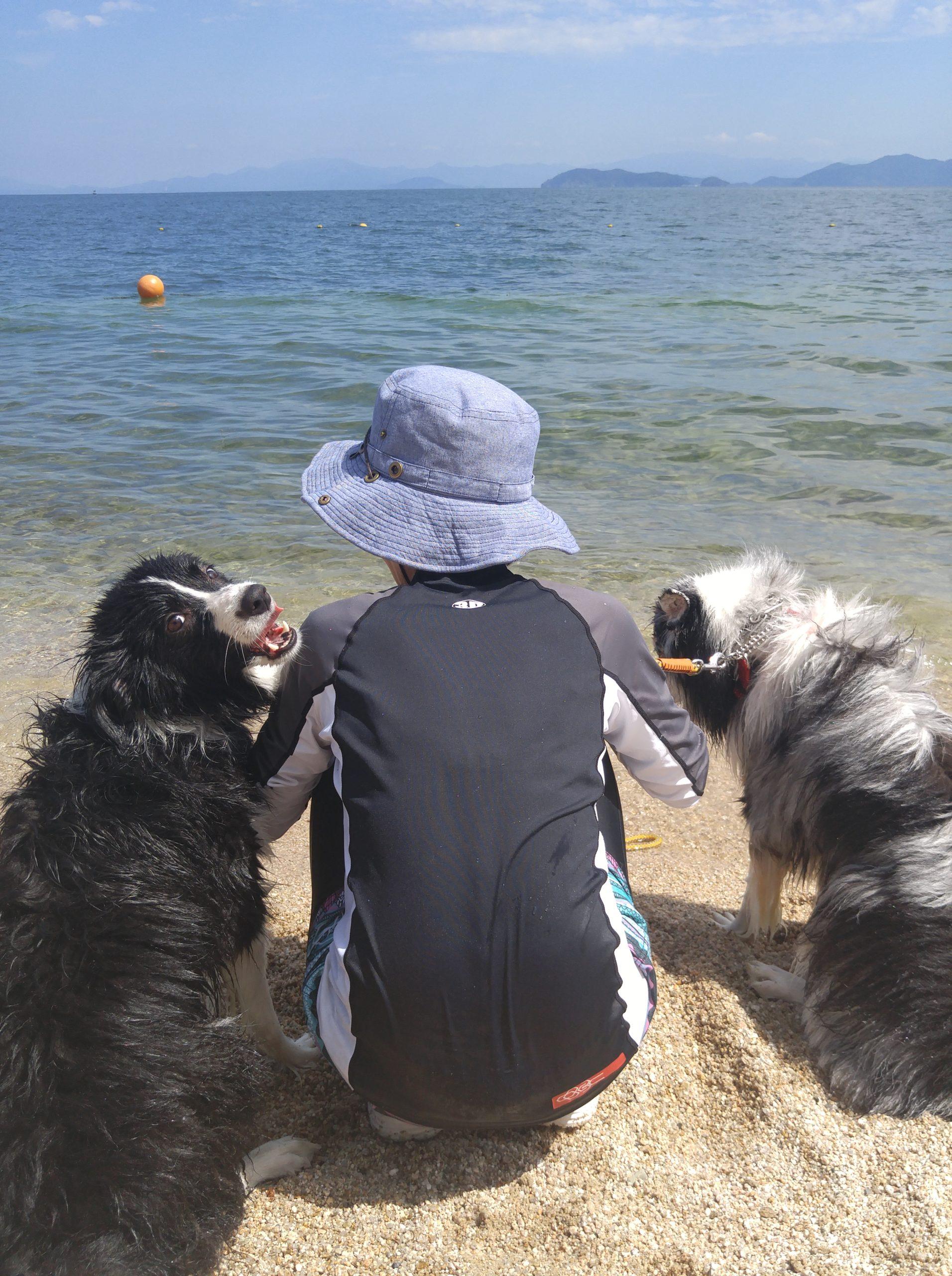 愛犬に犬友って必ずしも必要??【3】