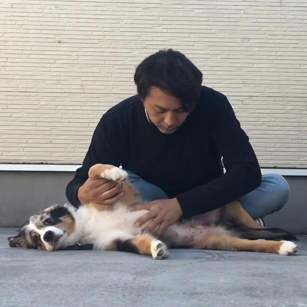 あなたは愛犬の体のケアが全て出来ますか?【1】 大事な愛犬の為に生涯必要なケアを練習しておこう